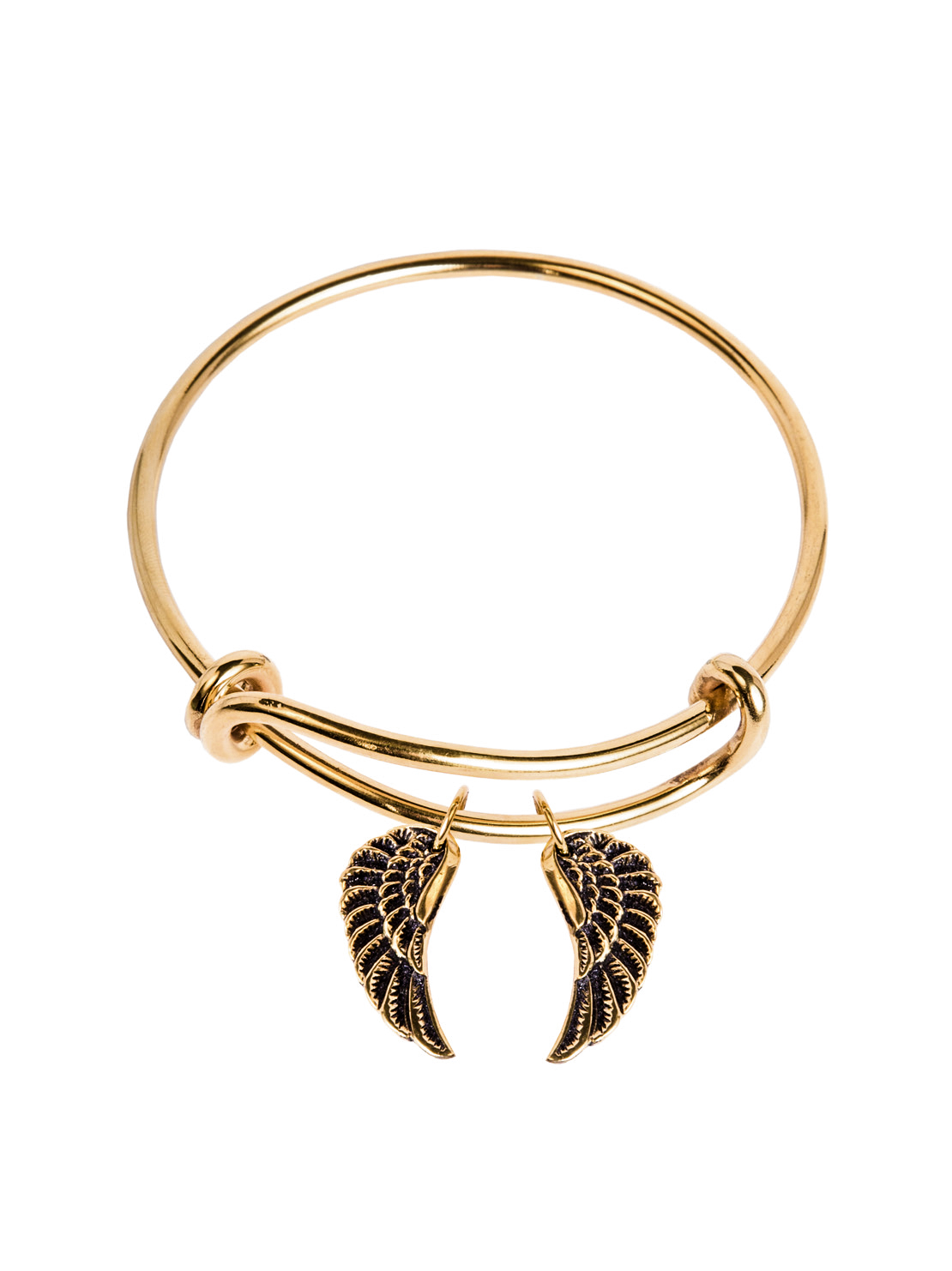 Charm Bangle With Wing Set