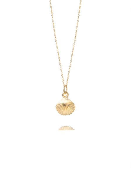 Scallop Shell On Trace Chain